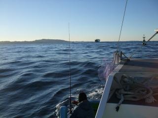 1月17日 釣り 017