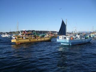 1月17日 釣り 025