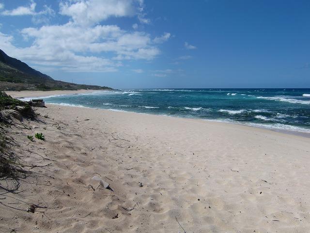 hawaii やまこ 148