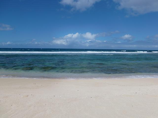 hawaii やまこ 153